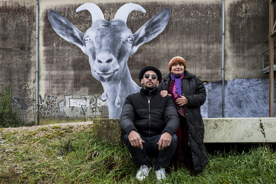 Cannes 2017: Timelines And Animal Rights, Faces And Places, Film Companion