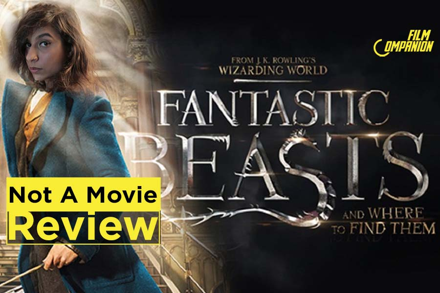 Fantastic Beasts and Where to Find Them, Film Companion