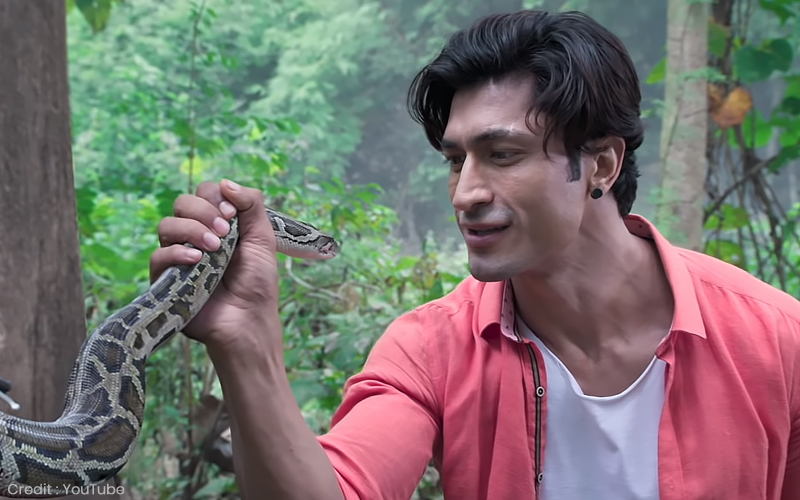 Junglee Movie Review: Impressive Elephants But Not Much Else, Film Companion