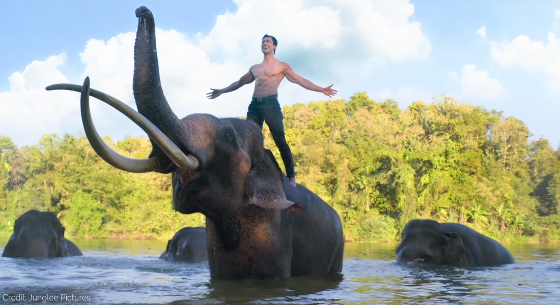 Junglee Trailer Talk: Vidyut Jammwal And Kalaripayattu Save The Elephants, Film Companion