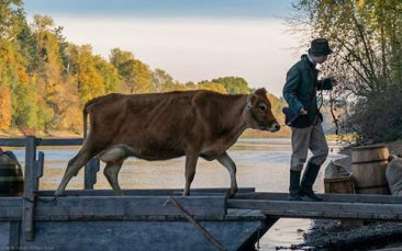 Kelly Reichardt's First Cow, Jia Zhang-ke's Swimming Out Till the Sea Turns Blue, And The Salt of Tears